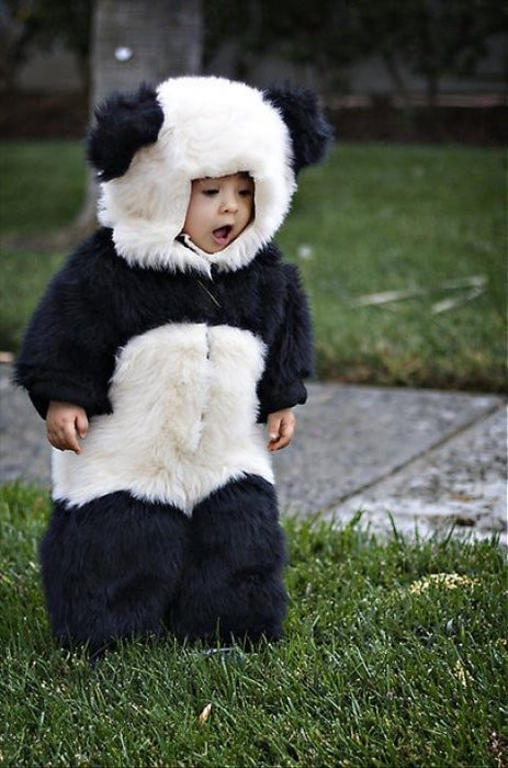 tags baby costumes halloween lobster costume panda costume penguin costume where the wild things are - Infant Penguin Halloween Costume